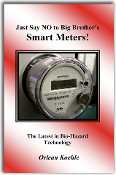Just say NO to Big Brother's Smart Meters  - PDF - VIEW ONLY
